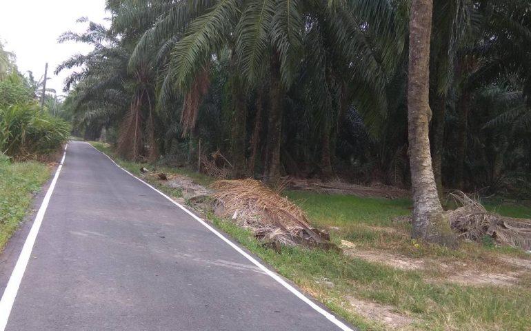 Kapar Klang Selangor Agri Land