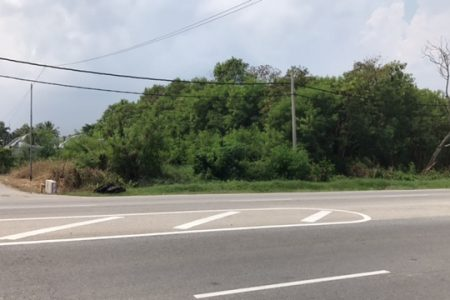 Jeram Kapar Roadside Land For Sale