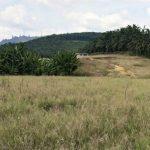 banting selangor agriculture land for sale