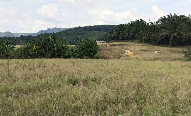 Banting Land for sale Selangor